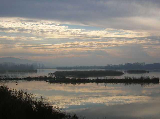 Il lago di Alviano (TR) - Foto di Gianfranco Spazioso [Licenza CC-BY-SA 3.0]