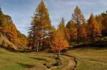 Strada_di_montagna