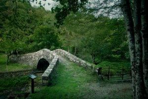 ponte_romanico_di_serravalle_bibbiena